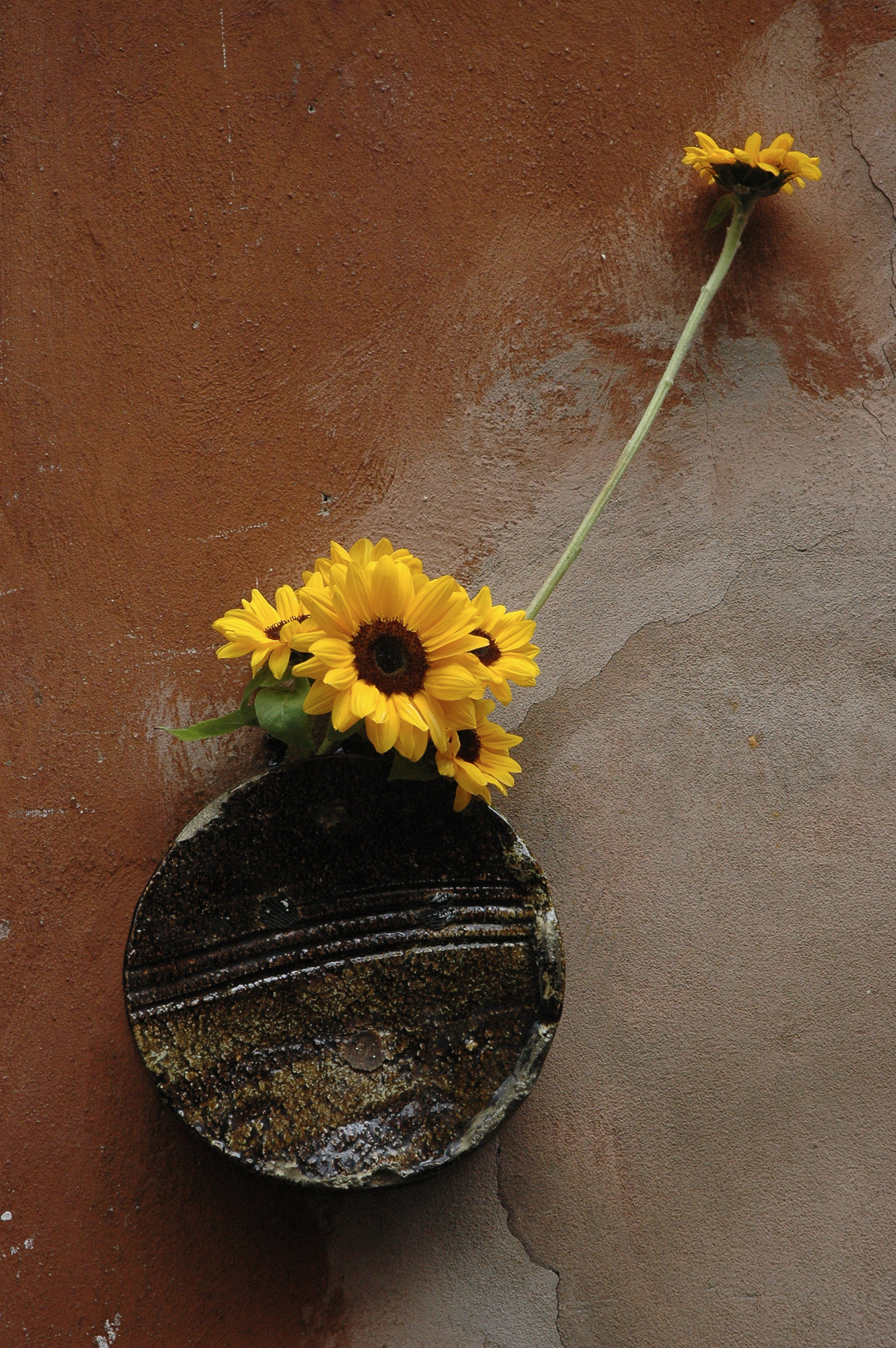 Vaso da appendere – Oil – Ikebana di Luca Ramacciotti